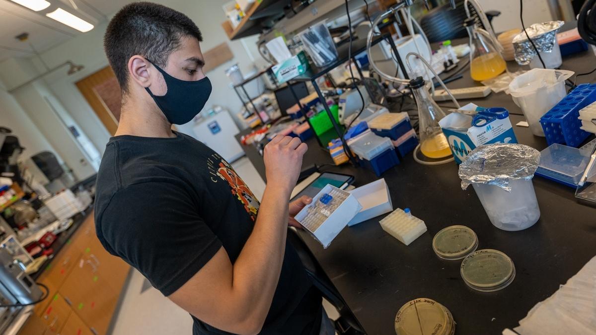 Student in biology lab stands at desk